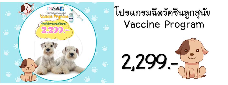 โปรแกรมฉีดวัคซีนลูกสุนัข11