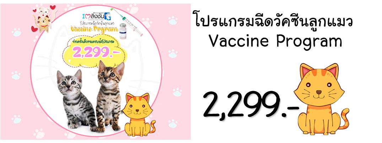 โปรแกรมฉีดวัคซีนลูกแมว1