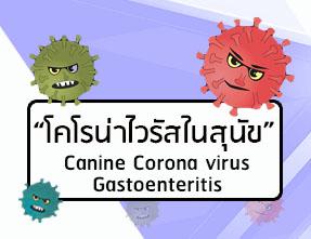 coronavirusโคโรน่าไวรัส