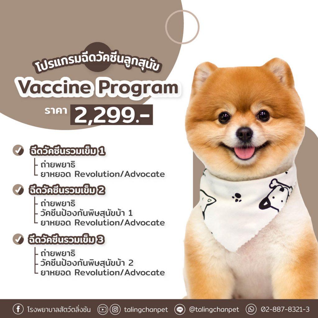 ฉีดวัคซีนลูกสุนัข