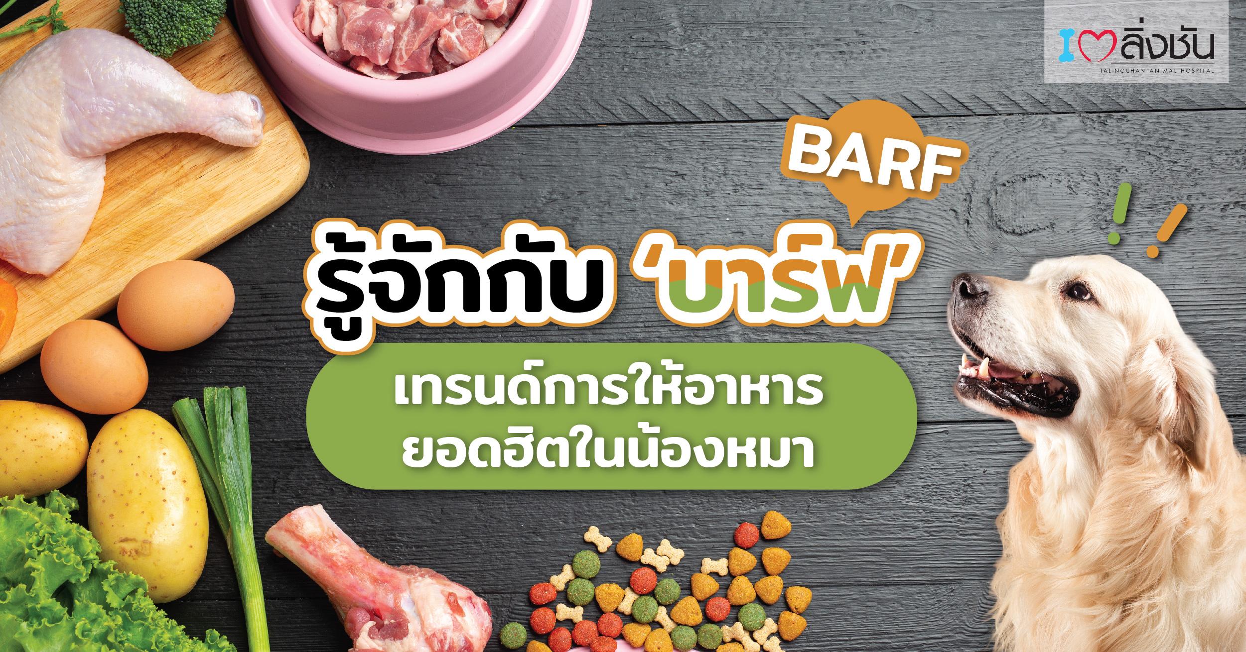 อาหารบาร์ฟบทความ-02