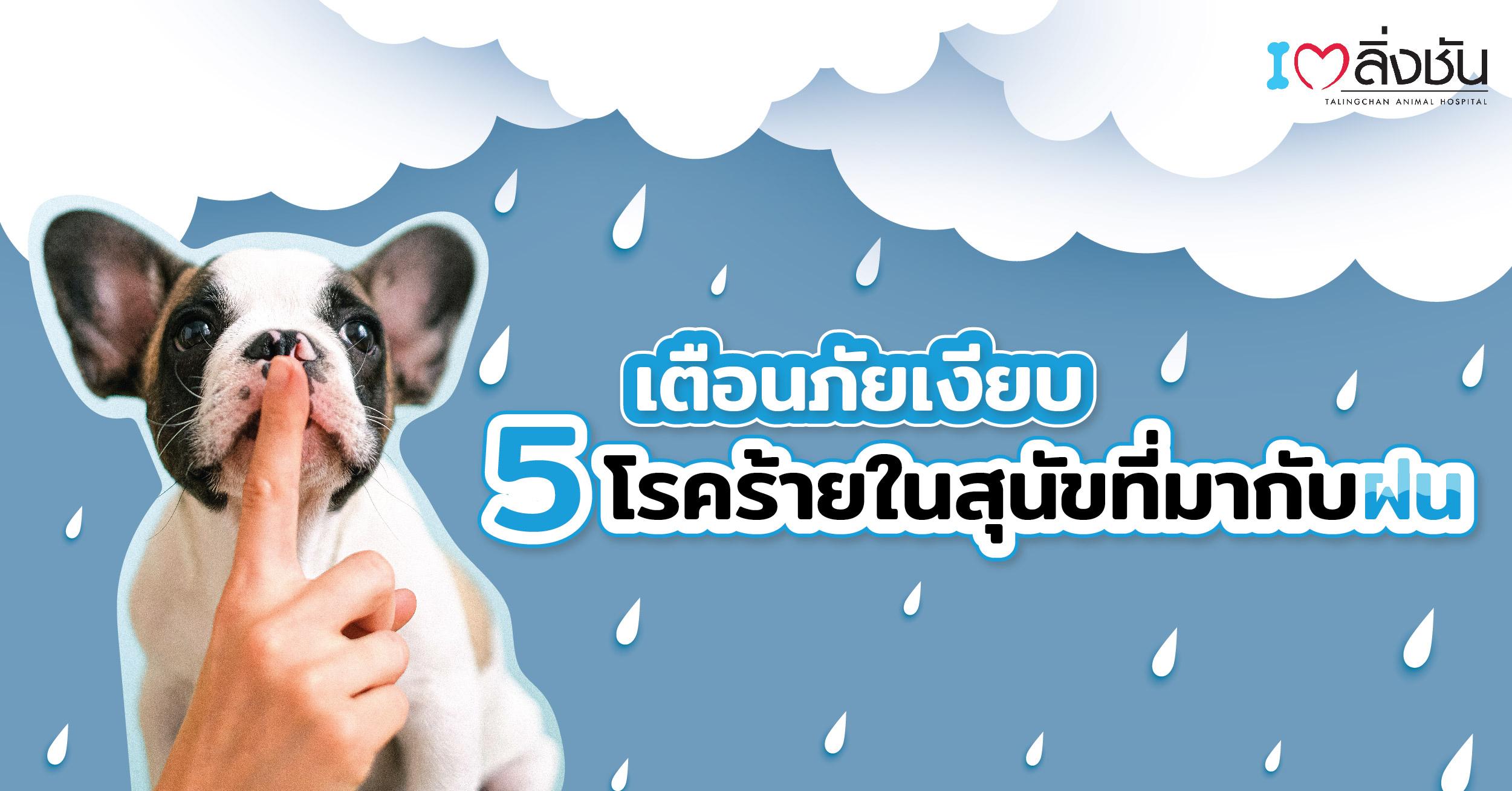 หน้าฝน-02