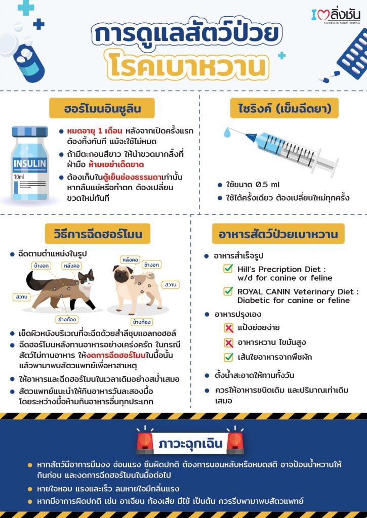 การดูแลสัตว์เป็นโรคเบาหวาน
