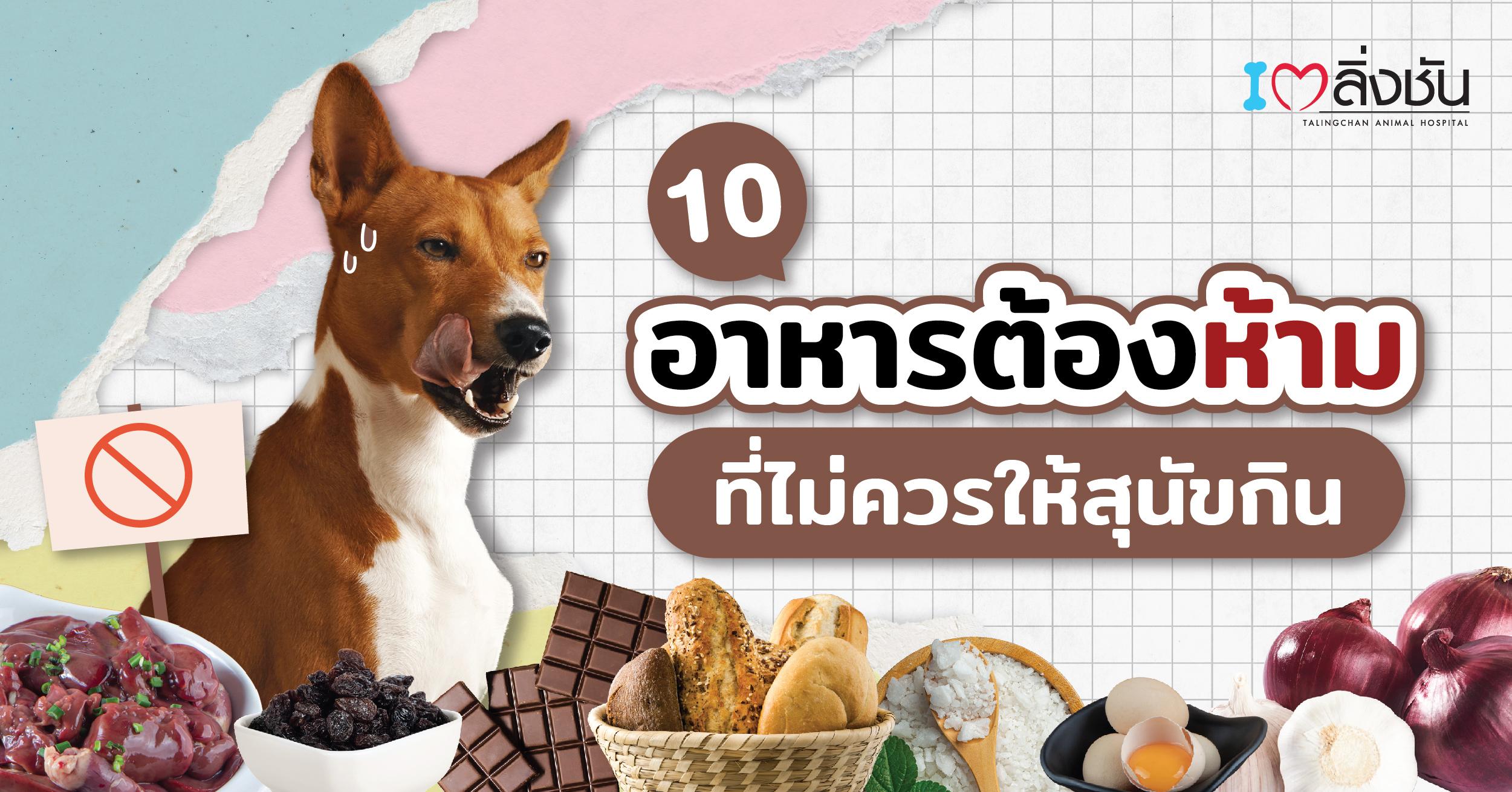 อาหารสุนัขห้ามกิน-03